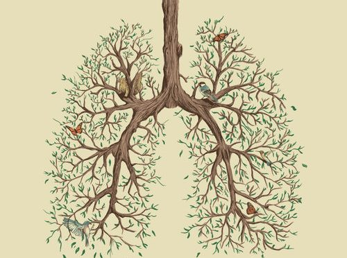 Autumn lung